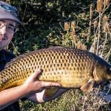 Découvrez la pêche de la carpe au coup en rivière