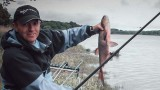 Découvrez les amorces sweet fishmeal