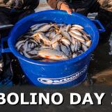 Garbolino Day 2016 – Compétition de pêche au coup en vidéo