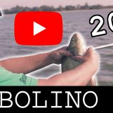 Garbolino Day 2017 – La compétition de pêche au coup revient en vidéo